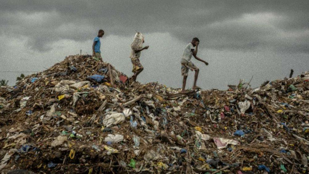 Cambio climático: 8 personas refugiadas que luchan por el planeta